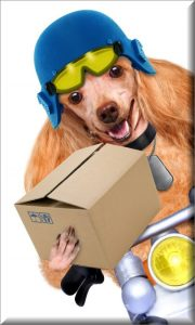 Delivery of parcel
