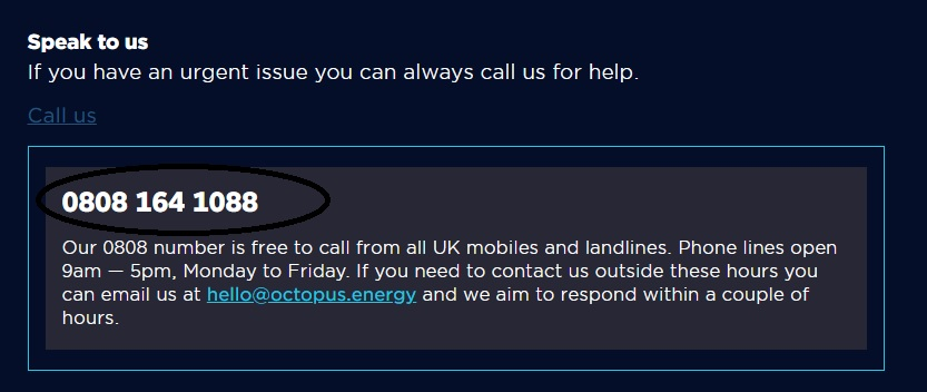 Octopus Energy customer service